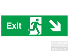 Exit / Running Man/ Arrow Down Right Sign