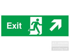 Exit / Running Man/ Arrow Up Right Signs